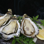 牡蠣の栄養成分は?妊娠中の健康や美肌に加熱調理が効果的?