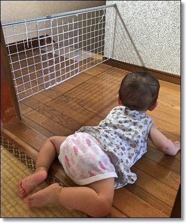 kashitsukinookibasyo-akatyann