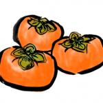 柿の効能や栄養成分まとめ!ダイエットや便秘・肝臓への効果は?