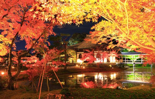 京都の紅葉は着物でデート!おすすめのコースやプランは?