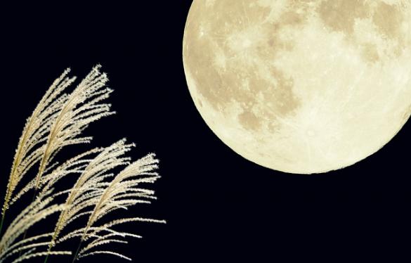 お月見団子のレシピは上新粉が人気?米粉や小麦粉でも簡単に?