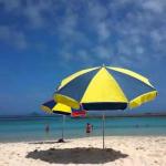 沖縄の水道水は飲める?おいしい水の硬度や水質の基礎知識